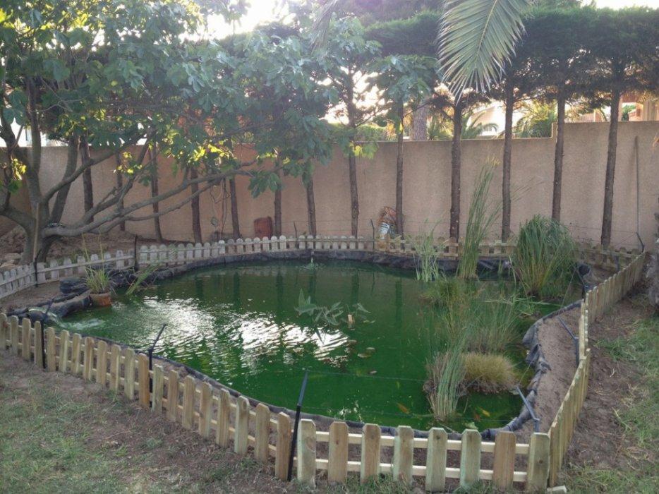 Bassin Koi 20m3